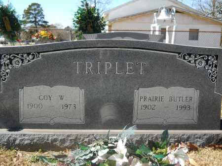 TRIPLET, PRAIRIE JANE - Columbia County, Arkansas | PRAIRIE JANE TRIPLET - Arkansas Gravestone Photos