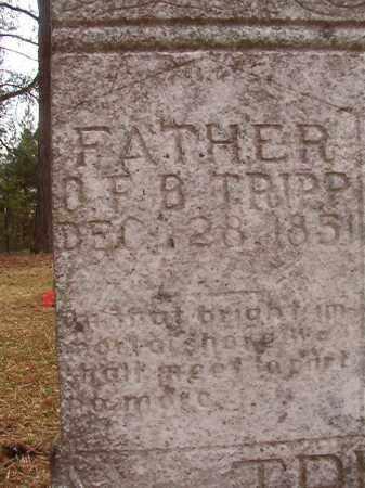 TRIPP, O F B - Columbia County, Arkansas | O F B TRIPP - Arkansas Gravestone Photos