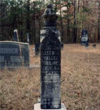 WALLER, ELIZA J - Columbia County, Arkansas | ELIZA J WALLER - Arkansas Gravestone Photos