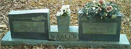 WALLER, GILMER GUY - Columbia County, Arkansas | GILMER GUY WALLER - Arkansas Gravestone Photos