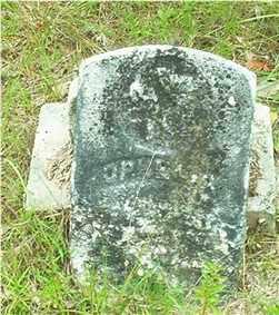 WALLER, OPHELIA - Columbia County, Arkansas   OPHELIA WALLER - Arkansas Gravestone Photos