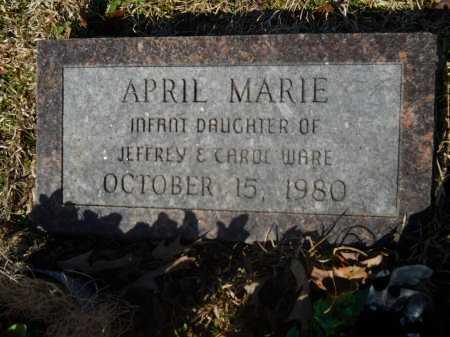 WARE, APRIL MARIE - Columbia County, Arkansas | APRIL MARIE WARE - Arkansas Gravestone Photos