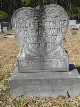 WARE, DALLAS E - Columbia County, Arkansas | DALLAS E WARE - Arkansas Gravestone Photos