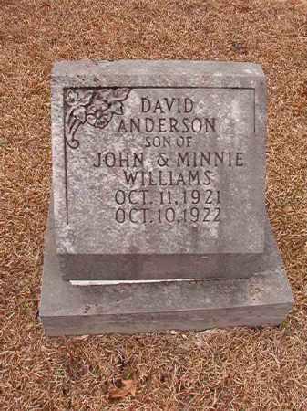 WILLIAMS, DAVID ANDERSON - Columbia County, Arkansas | DAVID ANDERSON WILLIAMS - Arkansas Gravestone Photos