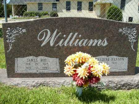 WILLIAMS, JAMES ROY - Columbia County, Arkansas | JAMES ROY WILLIAMS - Arkansas Gravestone Photos