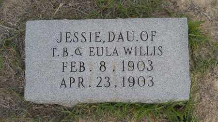 WILLIS, JESSIE - Columbia County, Arkansas   JESSIE WILLIS - Arkansas Gravestone Photos