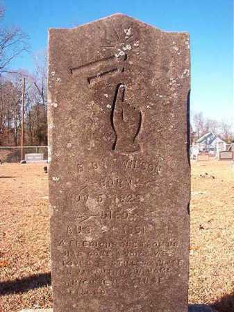 WILSON, B B - Columbia County, Arkansas   B B WILSON - Arkansas Gravestone Photos