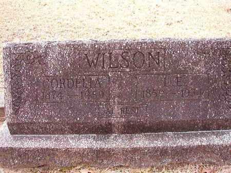 WILSON, L E - Columbia County, Arkansas | L E WILSON - Arkansas Gravestone Photos