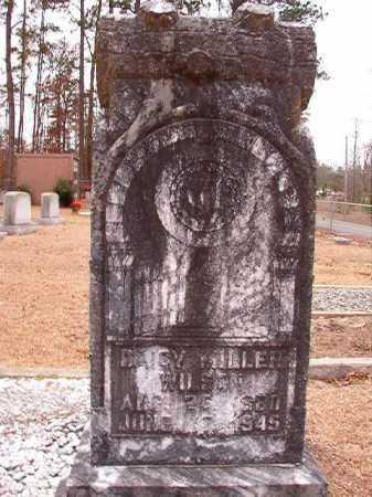 WILSON, DAISY - Columbia County, Arkansas | DAISY WILSON - Arkansas Gravestone Photos