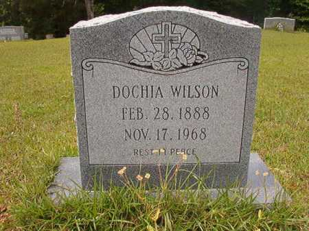 WILSON, DOCHIA - Columbia County, Arkansas | DOCHIA WILSON - Arkansas Gravestone Photos