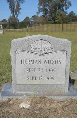 WILSON, HERMAN - Columbia County, Arkansas | HERMAN WILSON - Arkansas Gravestone Photos