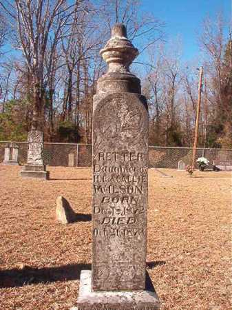 WILSON, RETTER - Columbia County, Arkansas | RETTER WILSON - Arkansas Gravestone Photos