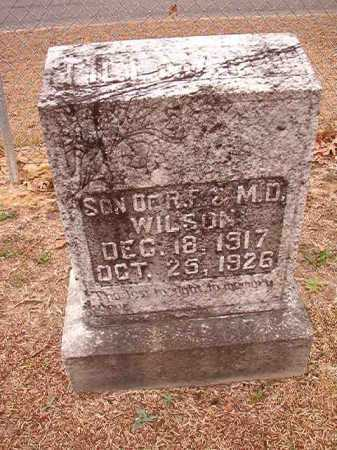 WILSON, TILLMAN - Columbia County, Arkansas | TILLMAN WILSON - Arkansas Gravestone Photos