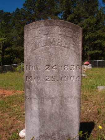 WOMBLE, POLLIE - Columbia County, Arkansas | POLLIE WOMBLE - Arkansas Gravestone Photos