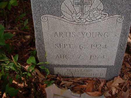 YOUNG, ARTIS - Columbia County, Arkansas | ARTIS YOUNG - Arkansas Gravestone Photos