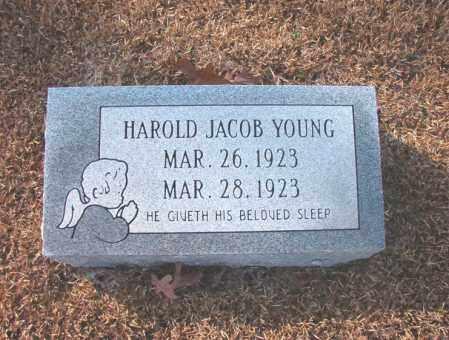 YOUNG, HAROLD JACOB - Columbia County, Arkansas | HAROLD JACOB YOUNG - Arkansas Gravestone Photos
