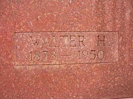 YOUNG, WALTER H - Columbia County, Arkansas | WALTER H YOUNG - Arkansas Gravestone Photos