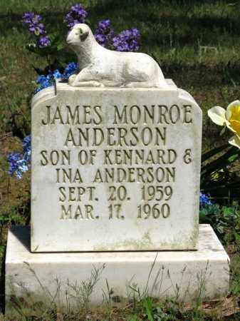 ANDERSON, JAMES MONROE - Conway County, Arkansas   JAMES MONROE ANDERSON - Arkansas Gravestone Photos