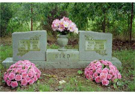 BIRD, ROSA NARSIS - Conway County, Arkansas | ROSA NARSIS BIRD - Arkansas Gravestone Photos