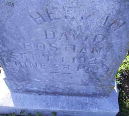 BOSTIAN, HERMAN DAVID - Conway County, Arkansas | HERMAN DAVID BOSTIAN - Arkansas Gravestone Photos