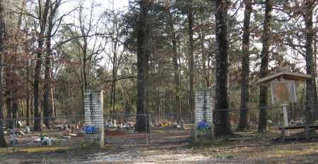 *BRENTS CEMETERY GATE,  - Conway County, Arkansas |  *BRENTS CEMETERY GATE - Arkansas Gravestone Photos