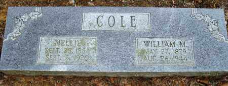 COLE, NELLIE - Conway County, Arkansas | NELLIE COLE - Arkansas Gravestone Photos