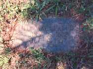 CRABTREE, LILLY MAY - Conway County, Arkansas | LILLY MAY CRABTREE - Arkansas Gravestone Photos