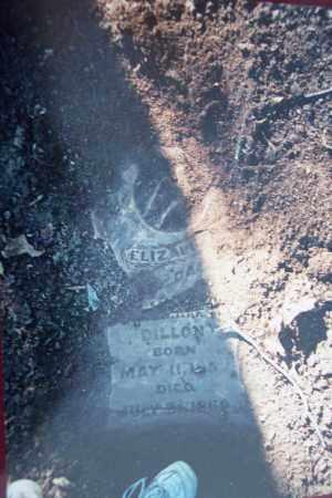 DILLON, ELIZABETH - Conway County, Arkansas | ELIZABETH DILLON - Arkansas Gravestone Photos