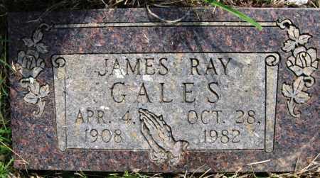 GALES, JAMES RAY - Conway County, Arkansas | JAMES RAY GALES - Arkansas Gravestone Photos