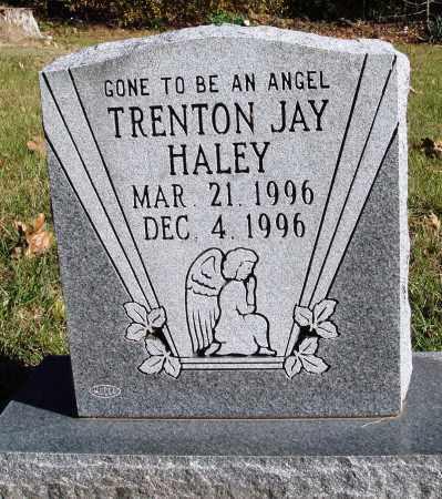 HALEY, TRENTON JAY - Conway County, Arkansas | TRENTON JAY HALEY - Arkansas Gravestone Photos