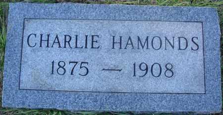 HAMONDS, CHARLIE - Conway County, Arkansas | CHARLIE HAMONDS - Arkansas Gravestone Photos