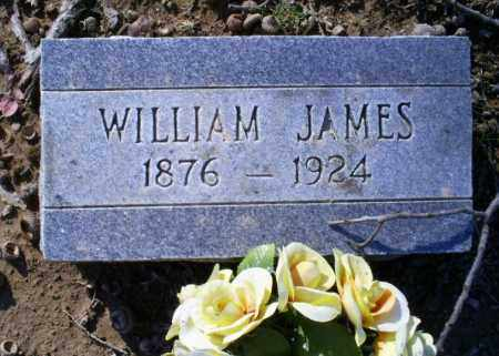 JAMES, WILLIAM - Conway County, Arkansas | WILLIAM JAMES - Arkansas Gravestone Photos