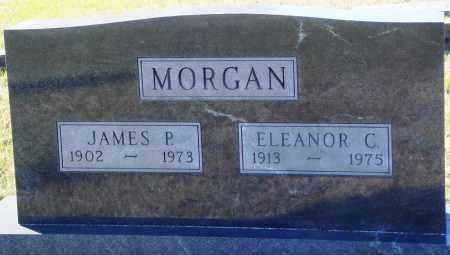 MORGAN, JAMES P. - Conway County, Arkansas | JAMES P. MORGAN - Arkansas Gravestone Photos