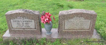 NORWOOD, BERTHA E. - Conway County, Arkansas | BERTHA E. NORWOOD - Arkansas Gravestone Photos