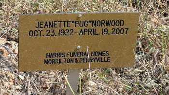 NORWOOD, JEANETTE - Conway County, Arkansas | JEANETTE NORWOOD - Arkansas Gravestone Photos