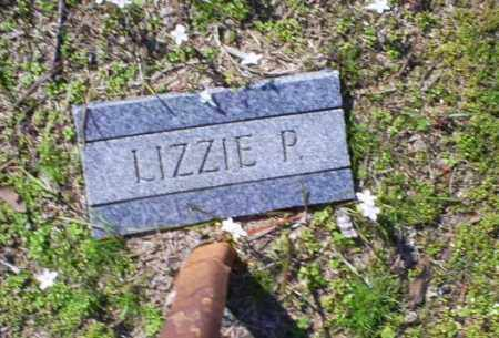 P, LIZZIE - Conway County, Arkansas | LIZZIE P - Arkansas Gravestone Photos