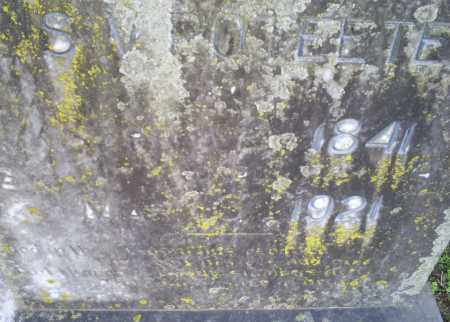POTEETE, S. V. - Conway County, Arkansas | S. V. POTEETE - Arkansas Gravestone Photos