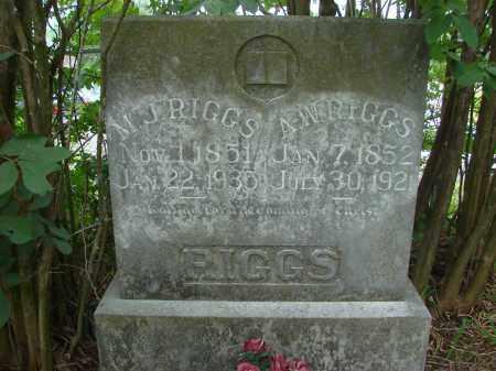 RIGGS, A. W. - Conway County, Arkansas | A. W. RIGGS - Arkansas Gravestone Photos