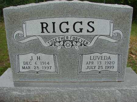 RIGGS, LUVEDA - Conway County, Arkansas   LUVEDA RIGGS - Arkansas Gravestone Photos