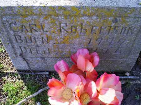 ROBERTSON, CARL - Conway County, Arkansas | CARL ROBERTSON - Arkansas Gravestone Photos