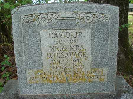 SAVAGE, JR., DAVID - Conway County, Arkansas | DAVID SAVAGE, JR. - Arkansas Gravestone Photos
