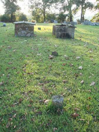 HOMAN SHAW (UNMARKE), SUSAN R - Conway County, Arkansas | SUSAN R HOMAN SHAW (UNMARKE) - Arkansas Gravestone Photos