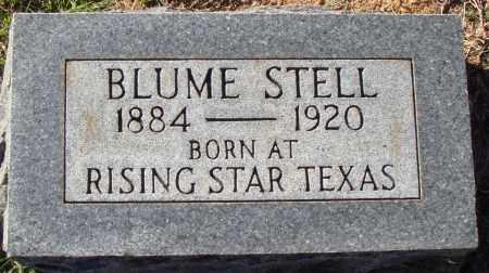 STELL, BLUME - Conway County, Arkansas | BLUME STELL - Arkansas Gravestone Photos