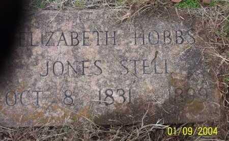 HOBBS STELL, RACHEL ELIZABETH - Conway County, Arkansas | RACHEL ELIZABETH HOBBS STELL - Arkansas Gravestone Photos