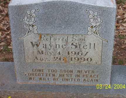 STELL, WAYNE - Conway County, Arkansas | WAYNE STELL - Arkansas Gravestone Photos