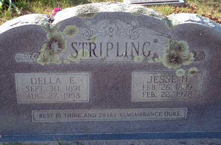 STRIPLING, JESSE H. - Conway County, Arkansas | JESSE H. STRIPLING - Arkansas Gravestone Photos