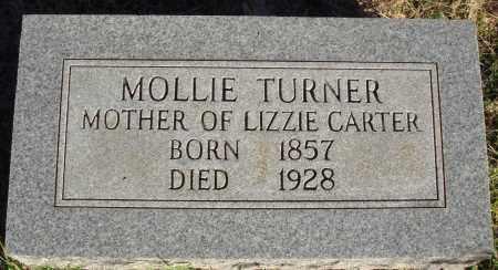 TURNER, MOLLIE - Conway County, Arkansas | MOLLIE TURNER - Arkansas Gravestone Photos