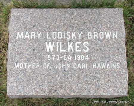 BROWN WILKES, MARY LODISKY - Conway County, Arkansas | MARY LODISKY BROWN WILKES - Arkansas Gravestone Photos