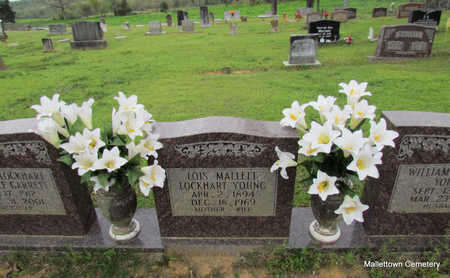 YOUNG, LOIS (CLOSE UP) - Conway County, Arkansas | LOIS (CLOSE UP) YOUNG - Arkansas Gravestone Photos