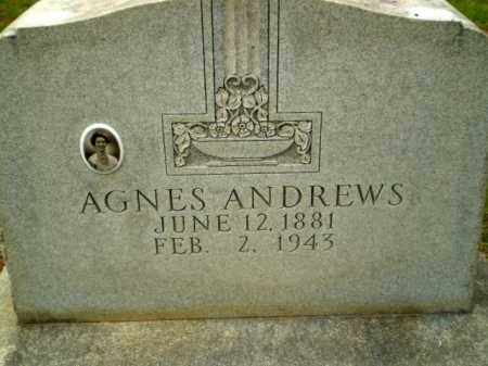 ANDREWS, AGNES - Craighead County, Arkansas | AGNES ANDREWS - Arkansas Gravestone Photos